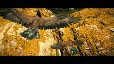 Day 18 Coolest visual effect - the Eagles Flight to The Carrock  >  First I love the rescue of the dwarves by the eagles, and then I loved their majestic flight.  Waiting to see if Thorin was okay was the only bad part!
