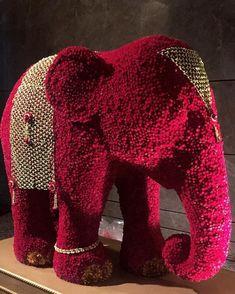 900 Elephants Ideas In 2021 Elephant Elephant Love Baby Elephant