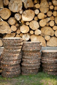 Contact a landscape company to see if we can purchase some log slices for food trays.