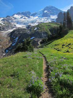 Wonderland Trail, Mt. Rainier -90 mile loop trail