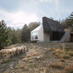 Serbian mountain home clad in both white ceramic tiles and dark wooden shingles.