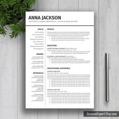 Professional Resume Template / CV Template US by ResumeExpert