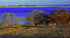 Folsom Lake, really just down the road from me and perfect for swimming in. Very warm lake! Nearby is Folsom Prison, Folsom Dam and the American River!