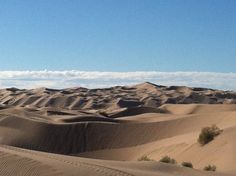 So much sand, so little time. Glamis Sand Dunes