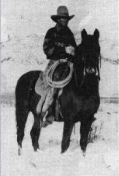 Flyhawk, uno de los sementales sobre los que se fundó la raza American Morgan Horse, originario de Wyoming