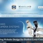 20 Inspiring Website Design for Perfect Color Combination