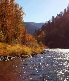 Warm autumn day on Rock Creek in Western Montana.  Savard Hospitality Consulting http://www.SavardHospitalityConsulting.com 406-825-5300