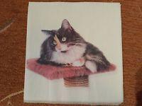 1x paper napkin Cat_10 / 1x Serviette Katze_10