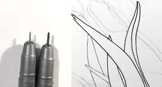 Instead, we can use a pen with a smaller nib size to create thinner lines for background objects and bigger Outline Drawings, Pencil Art Drawings, Art Drawings Sketches, Easy Drawings, Flower Art Drawing, Flower Drawing Tutorials, Floral Drawing, Painting Tutorials, Drawing Skills