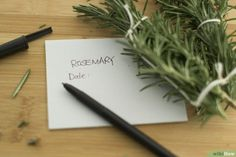 How to Harvest Rosemary: 7 Steps (with Pictures) - wikiHow