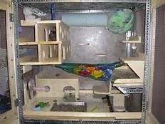 Chinchillas cage - Yahoo Image Search Results