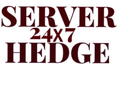 SERVERHEDGE   Admin services : -  Server Disaster recovery services - Hack Repair - Spam Investigation -  Server Audits, Server Management, Could management.