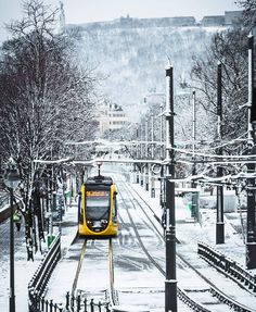 CAF Urbos Budapest Grey Wallpaper Iphone, Capital Of Hungary, Magic City, Weekends Away, Most Beautiful Cities, Winter Scenes, Travel Posters, Trolley, Scenery