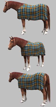 HorseBlanket