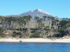 A Fast Raft Ocean Safari on #MontereyBay!
