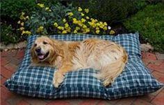 Shebang Outdoor Dog Bed Medium Green Plaid « Pet Advertisings