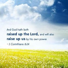 God raised Jesus and will raise us