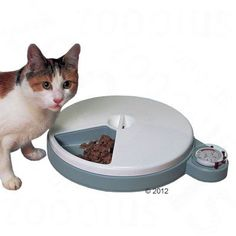 Dishes, Feeders & Fountains Delicious Cat Mate C50 Automatic Pet Feeder With Twin Ice Pack To Keep Fresh. Cat Supplies