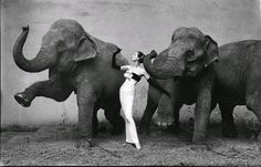 Richard Avedon: love his photography, all of it.