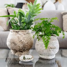 Turn any old vase or container into trendy rustic pottery. No cement used. Diy Concrete Planters, Diy Planters, Bath And Body Sale, Bath And Body Perfume, Terra Cotta, Gazebo On Deck, Diy Doll Miniatures, Old Pottery, Old Vases