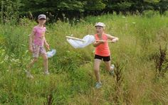 Kids get rare chance to commune with butterflies