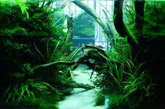 ZERO-AQUAの画像|エキサイトブログ (blog)