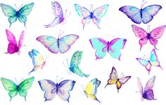 Watercolor Clip Art Blue Butterflies by Corner Croft on Creative Market