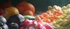 krautlocke – ich bin dann mal draußen – permakultur selbstversorgung kräuterpädagogik