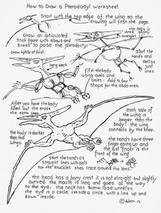 How to Draw Worksheets for The Young Artist: How To Draw A Pterodactyl Worksheet