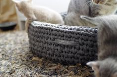 Bed for pets - Suitable for cats and small dogs.  Bed: Made by Bordo Monte.  Picture & Cats: #WiliWilla #Ocicat #petsupply #bed #ocicat #nest #catbed #catnest #nest #kissanpeti #kissanpesä #kissa #kissat #pesä #peti - Helsinki
