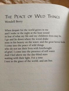The Peace of Wild Things. Wendell Berry focuses on nature and its peace in his poems while in his prose, he writes about environmental issues and issues he believes strongly in. The Words, Cool Words, Poem Quotes, Words Quotes, Life Quotes, Sayings, Wild Things Quotes, Wild Things Lyrics, Wild And Free Quotes