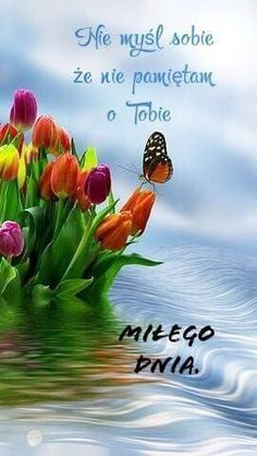 Miłe – – – Source by Cute Sentences, Beautiful Love Pictures, Good Morning Greetings, Beautiful Roses, Good Vibes, Animals And Pets, Projects To Try, Humor, Funny