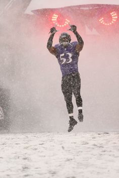 The Baltimore Ravens are taking on the Minnesota Vikings in week Baltimore Ravens Players, Football Gif, National Football League, Minnesota Vikings, Maryland, Squad, Photo Galleries, Nfl, Fantasy