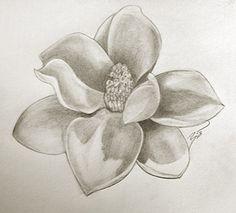 I want a magnolia tattoo sooooo bad!