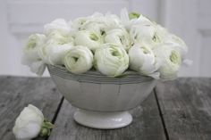 Beautiful white flowers arranged simply in a white bowl. Perfect for a low key wedding. Love Flowers, Vintage Flowers, White Flowers, Beautiful Flowers, White Ranunculus, White Peonies, Anemones, Shades Of Green, Green And Grey