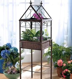 terrarium with orchids - Google Search