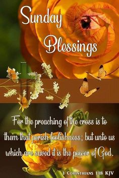 1 Corinthians 💜Have A Blessed Sunday💜 Blessed Sunday Morning, Blessed Sunday Quotes, Sunday Morning Quotes, Sunday Wishes, Morning Wishes Quotes, Have A Blessed Sunday, Sunday Love, Good Morning Prayer, Morning Blessings