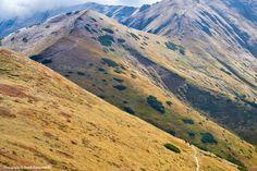 Tourists on mountain trail. The Tatra Mountains, amazing nature reserve. Carpathians landscape, Poland, Tatry Zachodnie, Polska. World Network of Biosphere Reserves (WNBR) - Unesco. Photography by Jarek Konarzewski