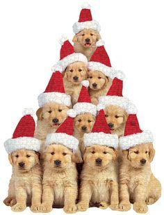 Christmas Cute!!    ¸.•♥•.¸¸¸ツ¸.•♥•.¸¸¸ツ¸.•♥•.¸¸¸ツ