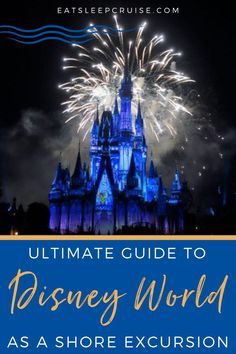 Are you considering visiting Walt Disney World as a Cruise Excursion? Here is our guide if you are planning a cruise vacation with stops in Florida? Does your cruise line offer a shore excursion to Walt Disney World in Orlando? If you are considering this as an option to pack more into your Florida vacation, check out our post. Here we review the pros and cons of visiting Disney as a cruise excursion with tips and tricks for planning your visit and making the most of your day! Cruise Excursions, Shore Excursions, Florida Vacation, Cruise Vacation, Walt Disney World, Caribbean, How To Plan, Orlando, Movie Posters
