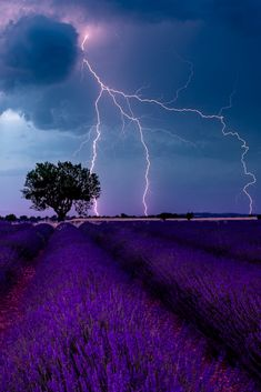 Your photos are a reflection of you. Such an amazing capture of a thunderstorm at Valensole, France #thunderstorm #france #landscape #photography #tutorial