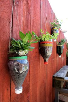 People make all kinds of excuses as to why they can't plant fruits, vegetables, or flowers around their house. Either there isn't enough space, the ground isn't fertile, or they've never had a green thumb in their life. Well, we're here to tell you that h