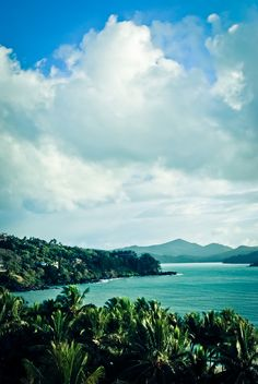 """touchdisky: """" Hamilton Island, Australia by trevornb """" Bali Travel, Hawaii Travel, Hamilton Island, Hawaii Surf, Exotic Beaches, Surfer Style, Surf Trip, Portugal Travel, Places Around The World"""