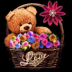 Basketful of Teddy Bear Love love animated romantic roses love quote romance gif basket teddy bear i love you Gif Pictures, Love Pictures, Gifs, Rose Love Quotes, Hug Gif, Love You Gif, Photo Frame Design, Happy Friendship Day, Bear Cartoon