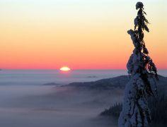 ★ Fresh Orange ★ Aurinko nousee Ukko-Kolilla. Kuva: Metsähallitus/ Tiina Hakkarainen. https://www.facebook.com/malle.taar/posts/10203782322618685