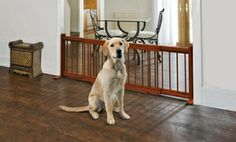 Groupon - Pet Store Expandable Wooden Pet Gate. in Online Deal. Groupon deal price: $26.99