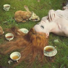 Alice in Wonderland / karen cox. Elle Hanley