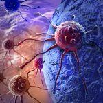 Cura del cancro : scoperta nuova via grazie alla ricerca.