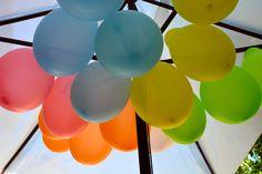 Ballons Anniversaire My Little Pony, Fruit, The Fruit