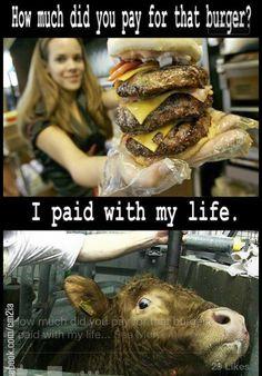 Choose compassion and go vegan!